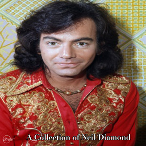 Listen to Shilo song with lyrics from Neil Diamond
