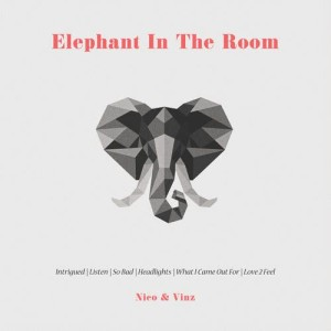 Album Elephant in the Room from Nico & Vinz