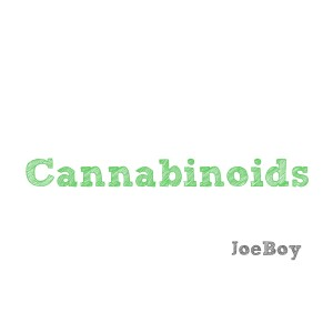 Listen to Cannabinoids song with lyrics from Joeboy