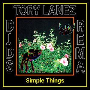 Album Simple Things from DJDS