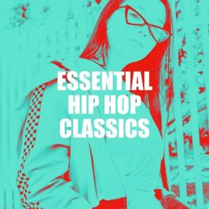 Album Essential Hip Hop Classics from DJ Hip Hop Masters