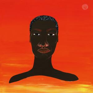 Album Stop The Hate from Femi Kuti