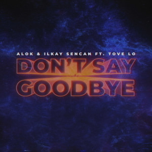 Listen to Don't Say Goodbye song with lyrics from Alok