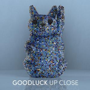 Album GoodLuck Up Close from Goodluck