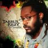 Download Lagu Tarrus Riley - She's Royal