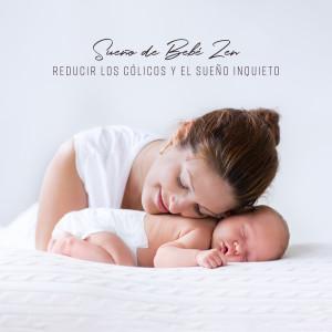 Album Sueño de Bebé Zen from Varios Artistas