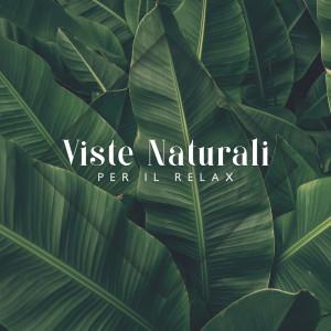 Album Viste Naturali per Il Relax (Suoni della Natura Sereni e Rilassanti) from Musica Relax Academia