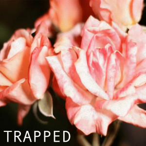 Album Trapped from Madchild