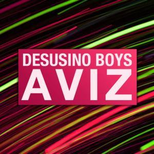 Album Aviz - EP from Desusino Boys