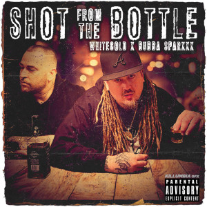Album Shot from the Bottle (Explicit) from Bubba Sparxxx