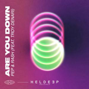Album Are You Down (feat. Troy Denari) from Troy Denari