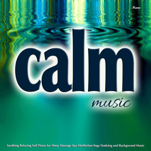 Calm Music Guru的專輯Calm Music Piano: Soothing, Relaxing, Soft Background Music for Sleep, Massage, Spa and More...