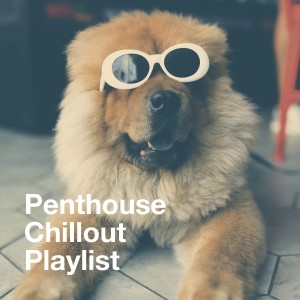 Album Penthouse Chillout Playlist from Chill Lounge Players