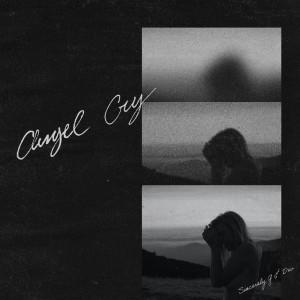 Album Angel Cry from Devon Baldwin