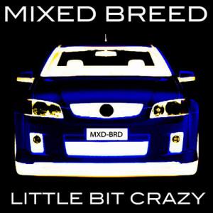 Mixed Breed的專輯Little Bit Crazy