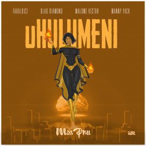 Listen to Uhulumeni (Explicit) song with lyrics from Miss Pru DJ