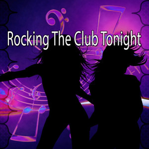 Album Rocking the Club Tonight from Dance Hits 2014
