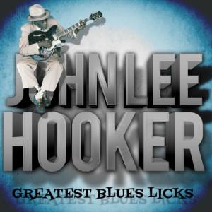 John Lee Hooker的專輯Greatest Blues Licks