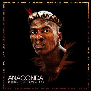 Album King Of Kwaito from Anaconda