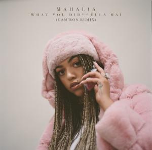 Ella Mai的專輯What You Did (feat. Ella Mai) [Cam'ron Remix]