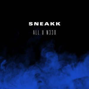 Listen to All U N33D song with lyrics from Sneakk