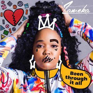 Album Been Through It All Single from Zameka