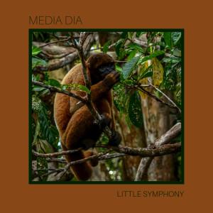 Little Symphony的專輯Media Dia