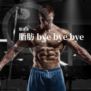 鄭冰冰的專輯脂肪 Bye Bye Bye