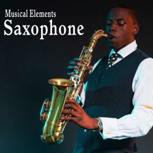 Sound Ideas的專輯Musical Elements – Saxophone Sound Effects