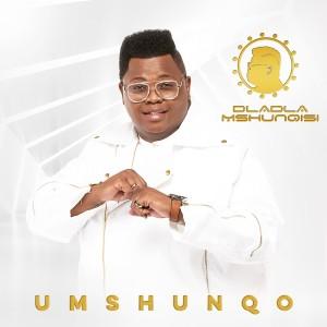 Listen to Sesfikile song with lyrics from Dladla Mshunqisi