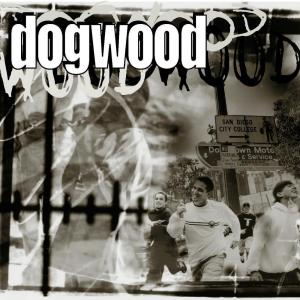 More Than Conquerors 1999 Dogwood