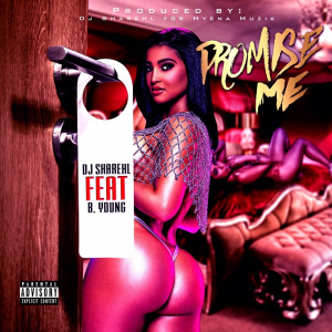 Album Promise Me (Explicit) from B.Young