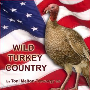 Album Wild Turkey Country from Toni Melton-Treworgy
