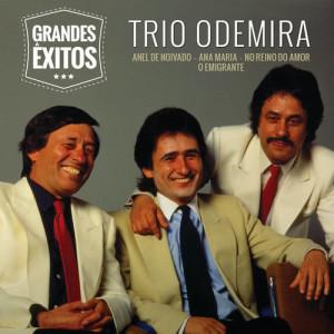 Album Grandes Êxitos from Trio Odemira