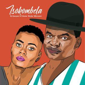 Album Tsokombela from DJ Ganyani