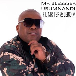 Album Ubumnandi from Lebo M