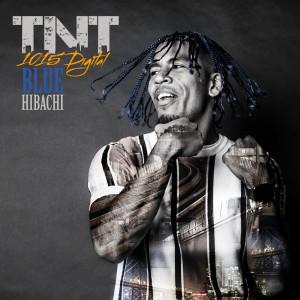 Album TNT (Explicit) from Bluehibachi