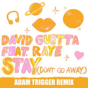 David Guetta的專輯Stay (Don't Go Away) [feat. Raye] (Adam Trigger Remix)