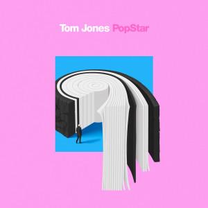 Album Pop Star from Tom Jones