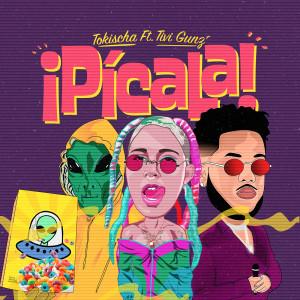 Listen to Pícala song with lyrics from Tokischa