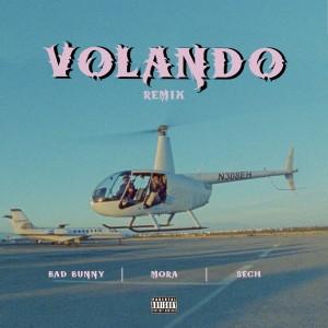 Sech的專輯Volando (Remix) (Explicit)