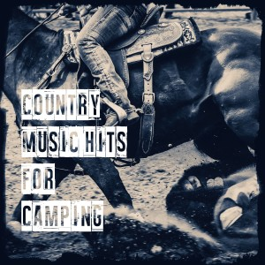 Album Country Music Hits for Camping from Country Music Heroes