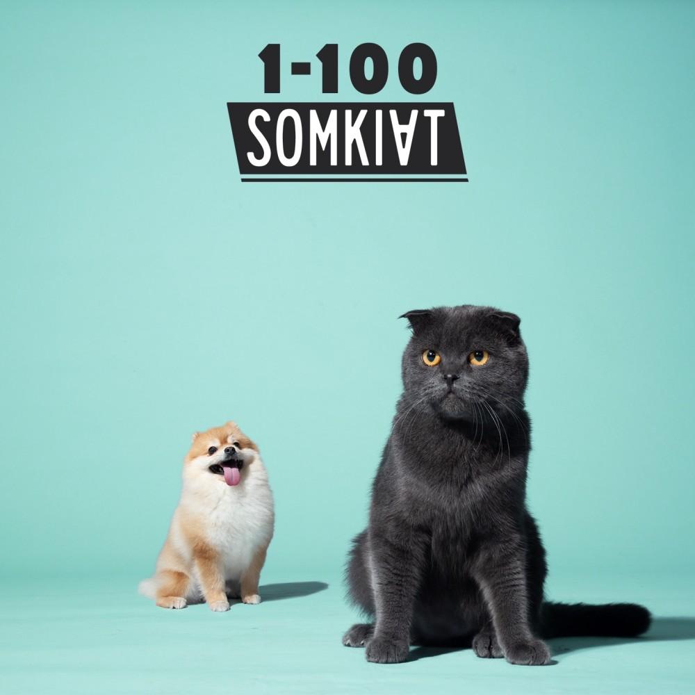 ฟังเพลงอัลบั้ม 1-100