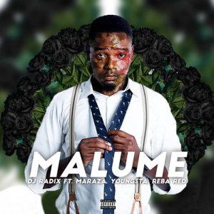 Album Malume from DJ Radix