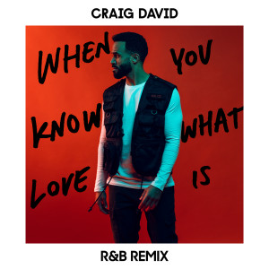 Album When You Know What Love Is (R&B Remix) from Craig David