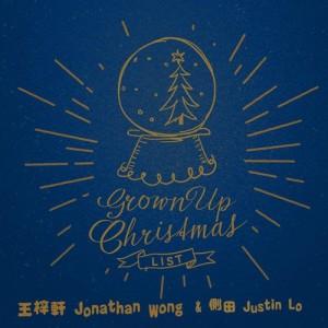 王梓軒的專輯Grown Up Christmas List (英)