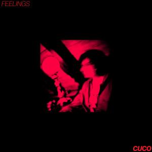 อัลบั้ม Feelings