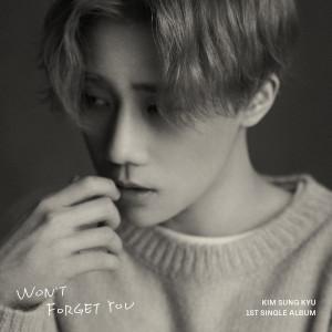 金聖圭(Infinite)的專輯Won't Forget You