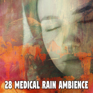 Album 28 Medical Rain Ambience from Rain Sounds & White Noise