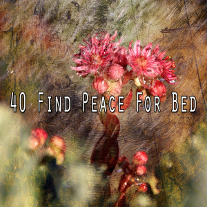 Monarch Baby Lullaby Institute的專輯40 Find Peace for Bed